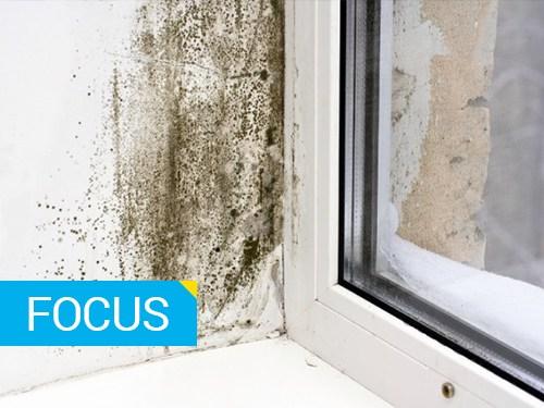 Umidita condensa e muffe tutte le soluzioni - Eliminare condensa in casa ...